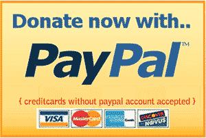 how-to-add-paypal-donate-button.png