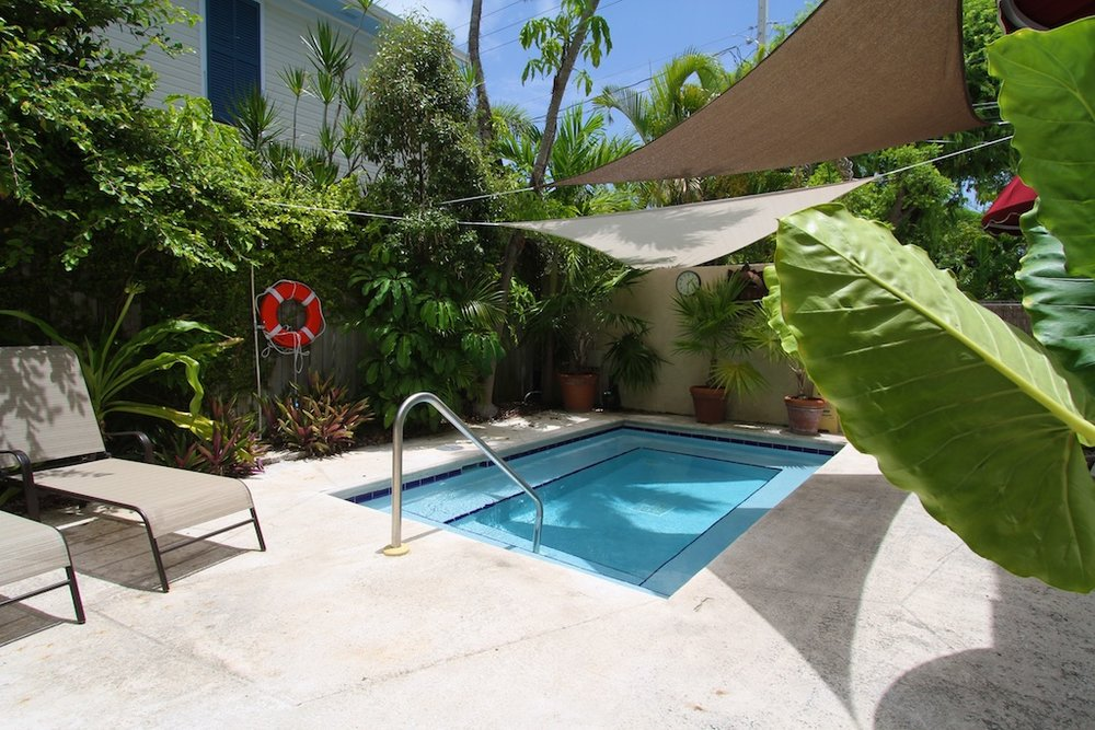 outdoor pool area surrounded by lush tropical greenery.