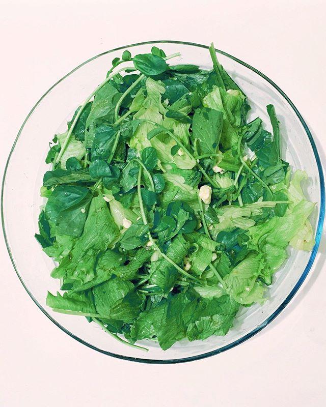Como tá seu consumo de saladas? Folhas verdes são fontes ricas de vitaminas e sais minerais, além de terem poucas calorias.⠀⠀⠀⠀⠀⠀⠀⠀⠀ ⠀⠀⠀⠀⠀⠀⠀⠀⠀ Pra quem segue um estilo de alimentação low carb, consumir saladas é essencial, pois podem ser excelentes carreadoras de gorduras e também uma fonte de fibras, o que é fundamental para o bom funcionamento do intestino.⠀⠀⠀⠀⠀⠀⠀⠀⠀ ⠀⠀⠀⠀⠀⠀⠀⠀⠀ Não importa o estilo de alimentação que você siga, saladas verdes são sempre uma escolha saudável.⠀⠀⠀⠀⠀⠀⠀⠀⠀ ⠀⠀⠀⠀⠀⠀⠀⠀⠀ Essa aí da foto é um mix de agrião e alface americana, temperados com sal integral, óleo TCM e pedacinhos de queijo gorgonzola. Ficou simples, prática e gostosa.⠀⠀⠀⠀⠀⠀⠀⠀⠀ ⠀⠀⠀⠀⠀⠀⠀⠀⠀ Agora, conta pra gente: o que você costuma usar para temperar suas saladas?⠀⠀⠀⠀⠀⠀⠀⠀⠀ ⠀⠀⠀⠀⠀⠀⠀⠀⠀ ⠀⠀⠀⠀⠀⠀⠀⠀⠀ ⠀⠀⠀⠀⠀⠀⠀⠀⠀ #otimizese #lowcarb #salada #saladaverde #tcm