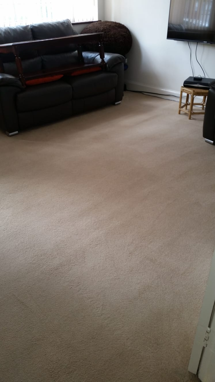 sitting room carpet cleaning