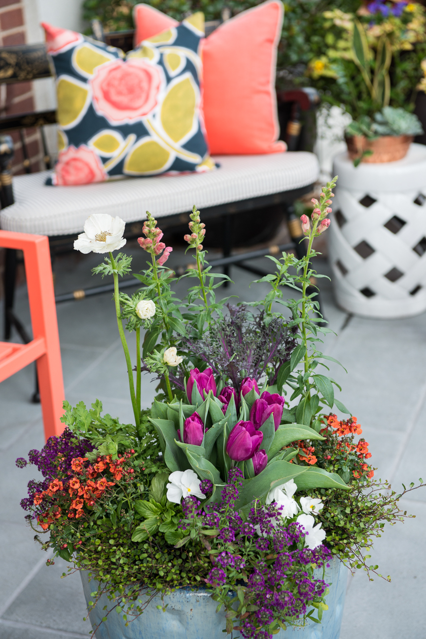 How to Update Your Porch for Spring | Front Porch | Front Porch Refresh | Patio Ideas | Outdoor Entertaining | Patio Refresh | Southern Porch | Colorful Porch Ideas | Porch Ideas for Spring | Porch Decorating Ideas | Container Garden | Container Garden Ideas | Container Garden for Porch | Paprika Southern