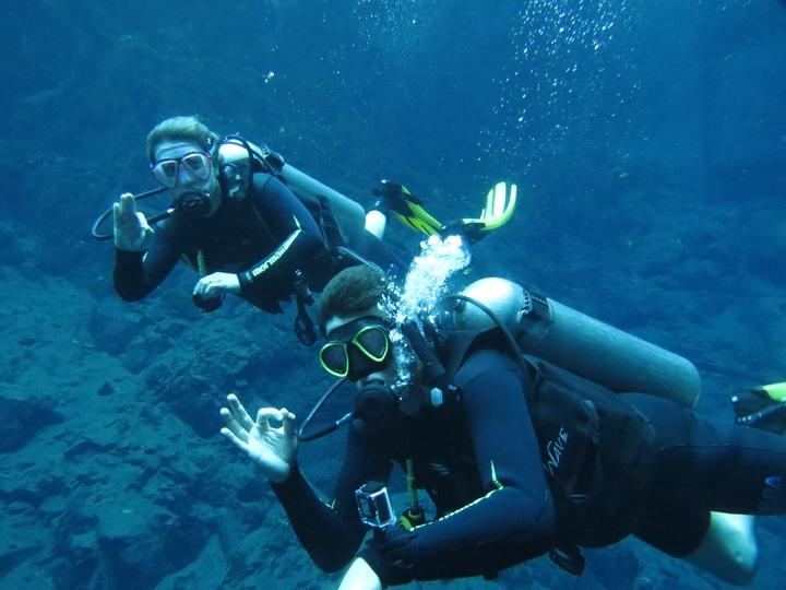 recreation-diving-underwater-biology-blue-lagoon-reef-649233-pxhere.com.jpg