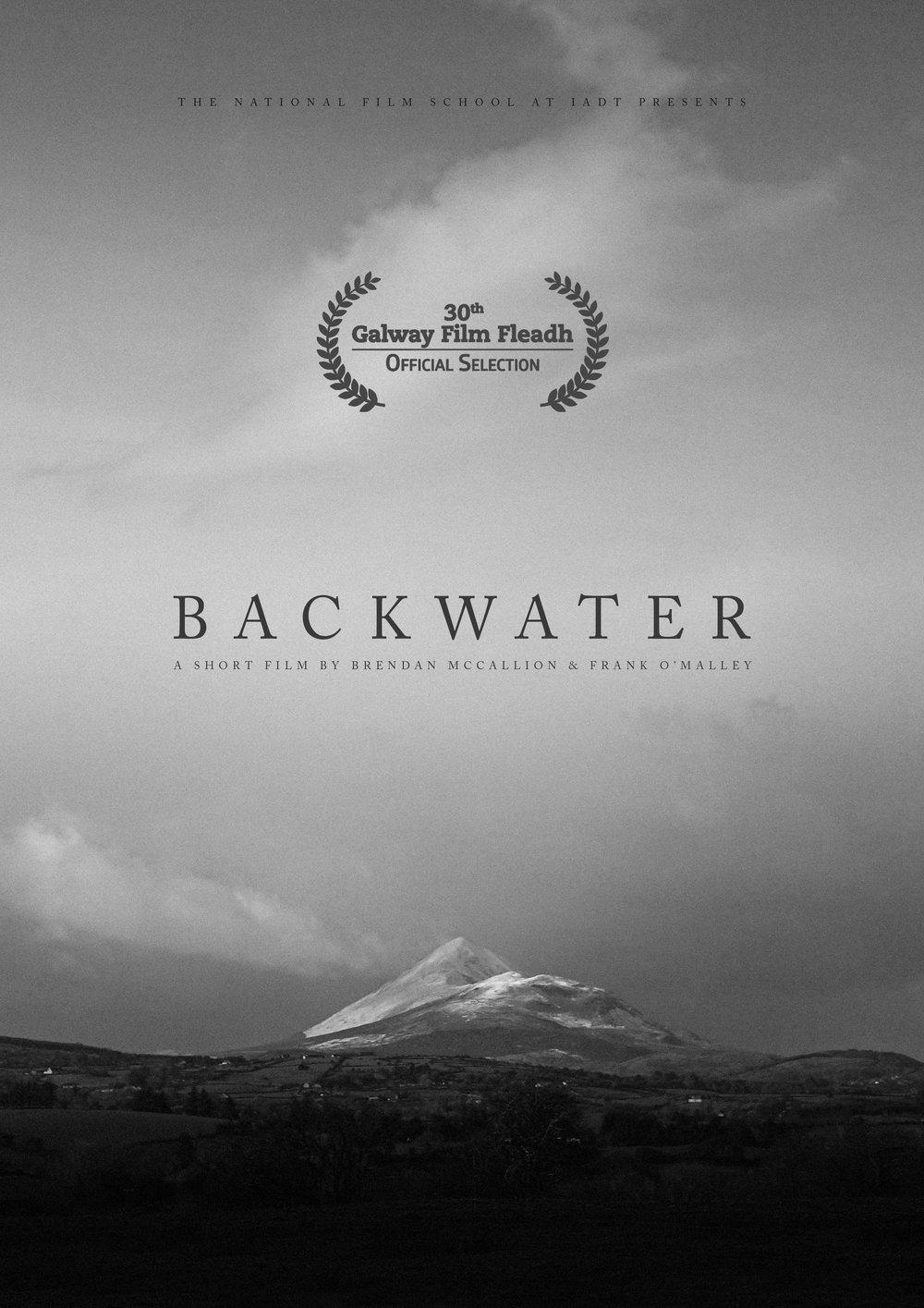 BackwaterPosterGalwayAnouncment.jpg