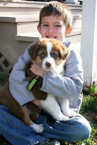A Roxy pup -