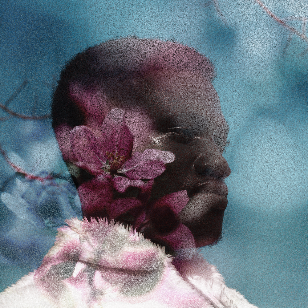 Small-Softness-PrinceAkachi.png