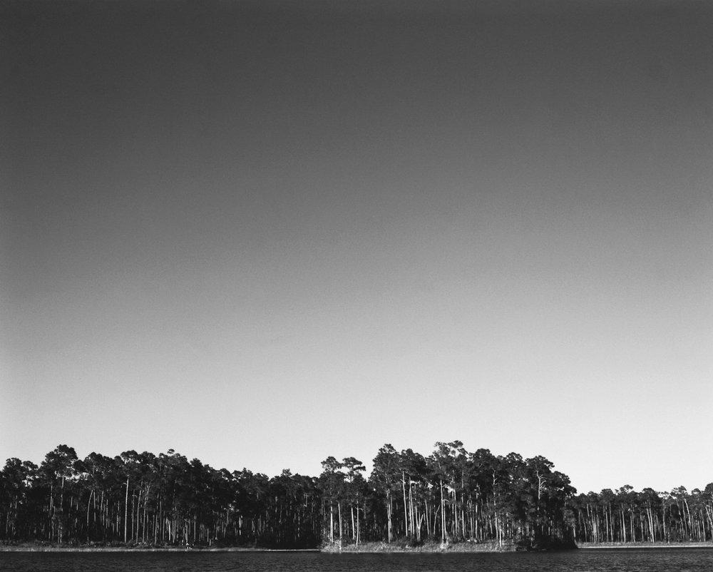 Florida Everglades - Fuji Acros