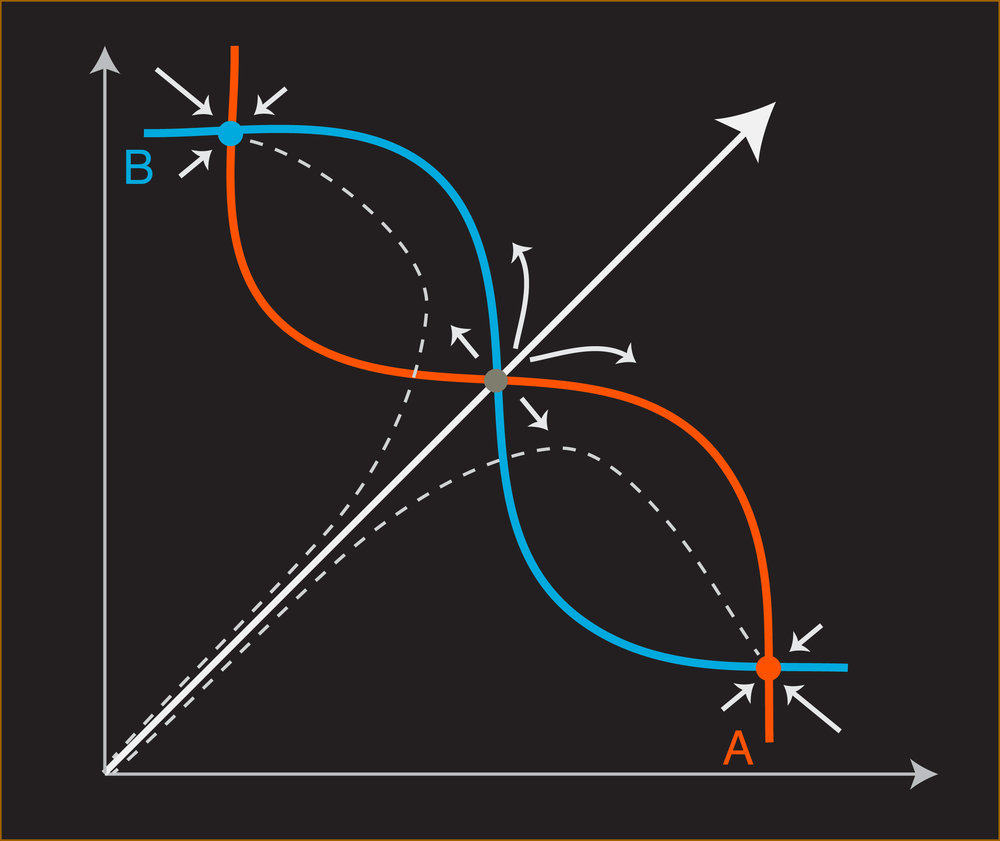 attractor_new-01.jpg