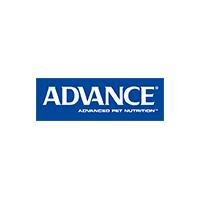 advance_1.jpg