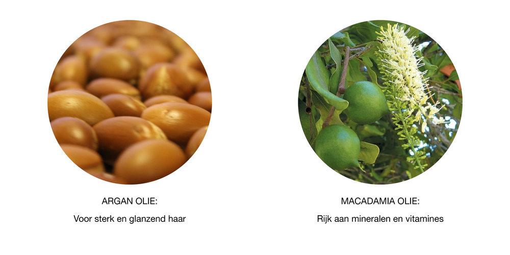 Argan en Macadamia.jpg