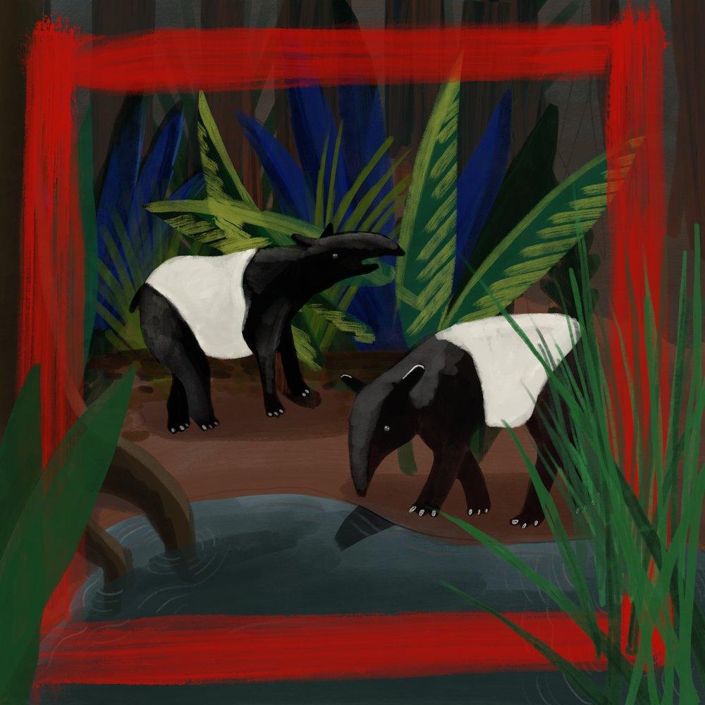 web.jungle one.jpg