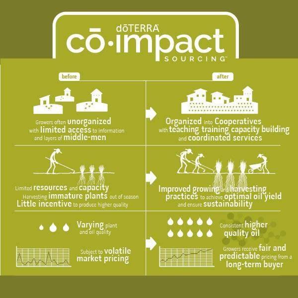 Co-Impact-Sourcing-600x600.jpg