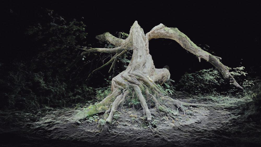 Dark Fractures - Nature's Ruin 02 - Digital