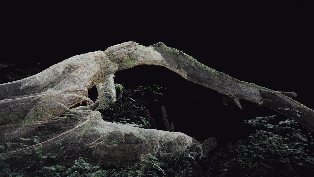 Dark Fractures - Nature's Ruin 03 - Digital
