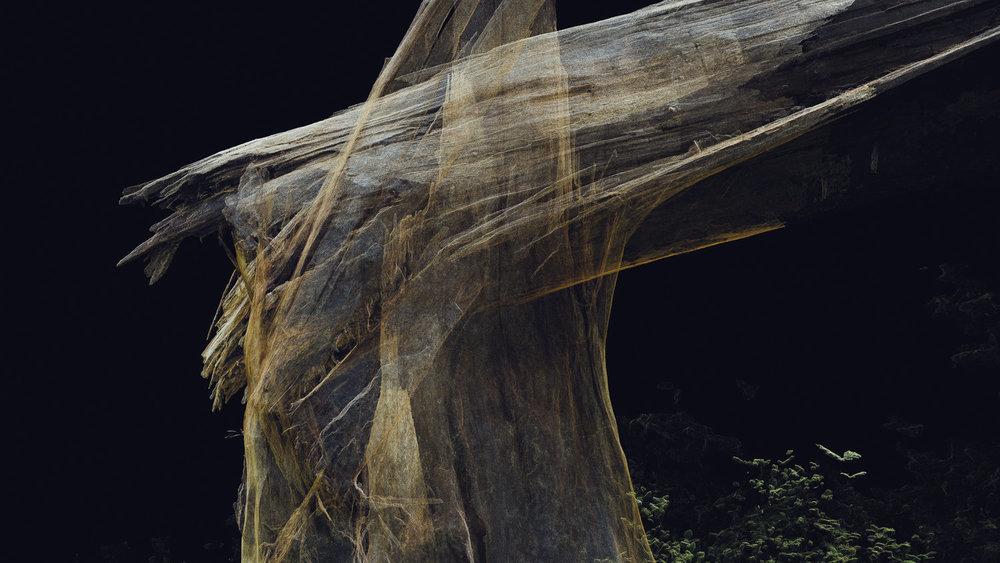 Dark Fractures - Nature's Ruin 04 - Digital