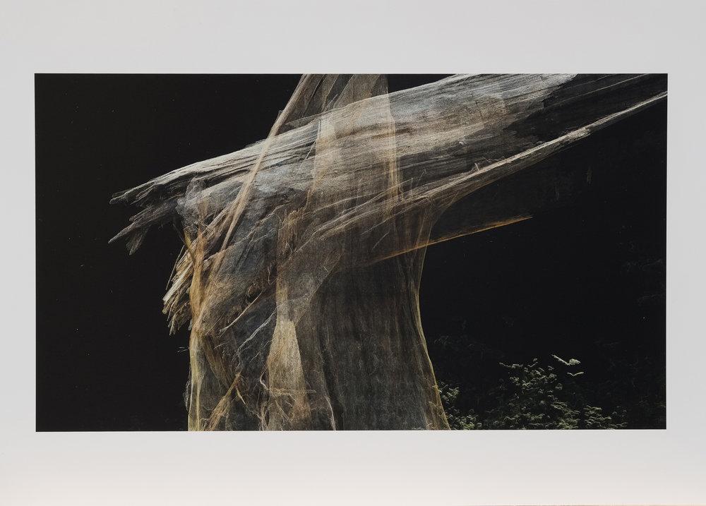 Dark Fractures - Nature's Ruin 04 - Print