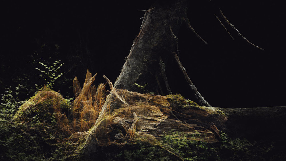 Dark Fractures - Nature's Ruin 06 - Digital
