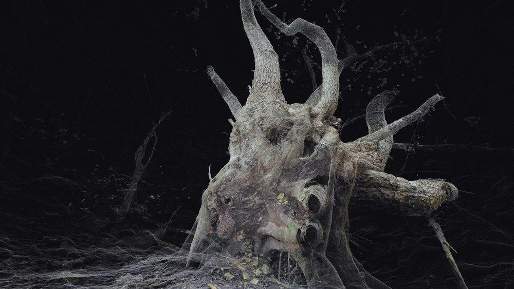 Dark Fractures - Nature's Ruin 07 - Digital