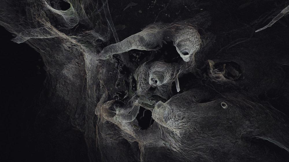 Dark Fractures - Nature's Ruin 08 - Digital
