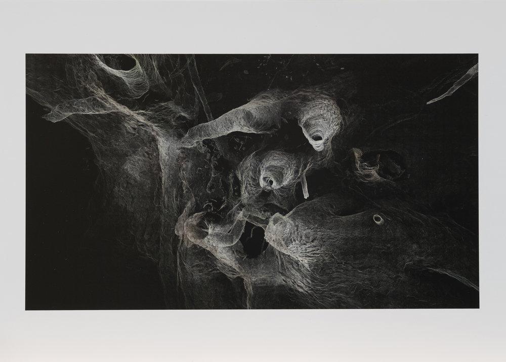 Dark Fractures - Nature's Ruin 08 - Print