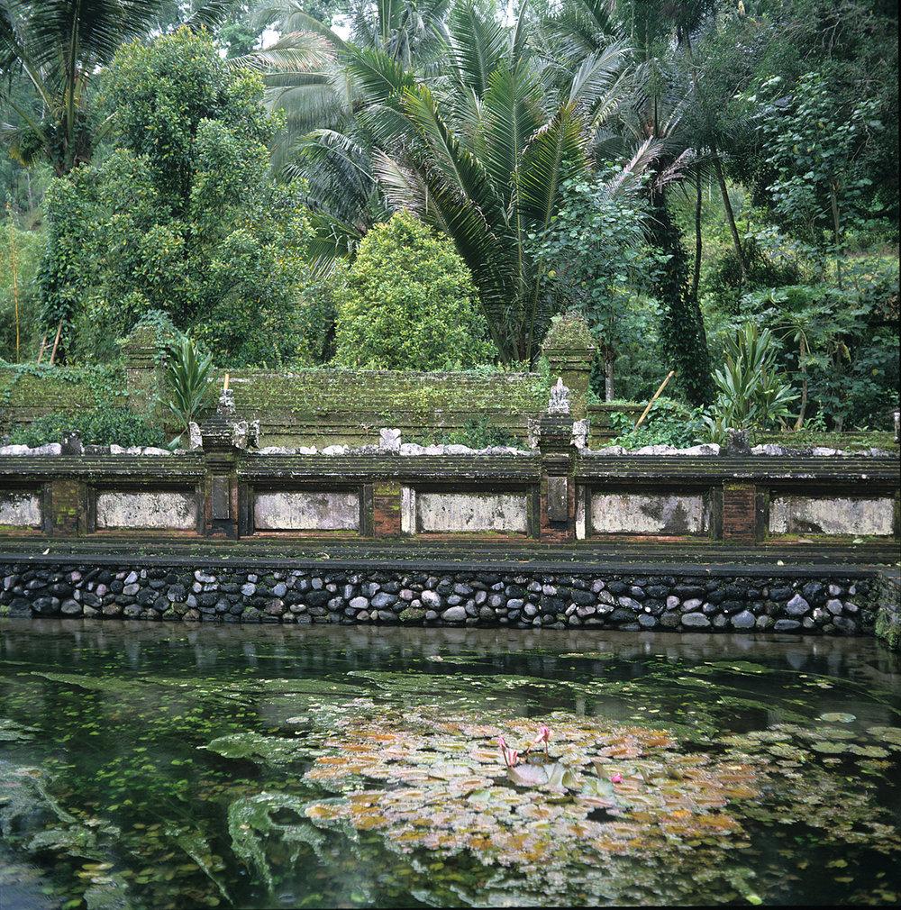 Sanctuary -Tirta Empul, Bali.jpg