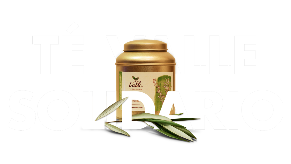 Cabecera-Valle-te-solidario-top.png