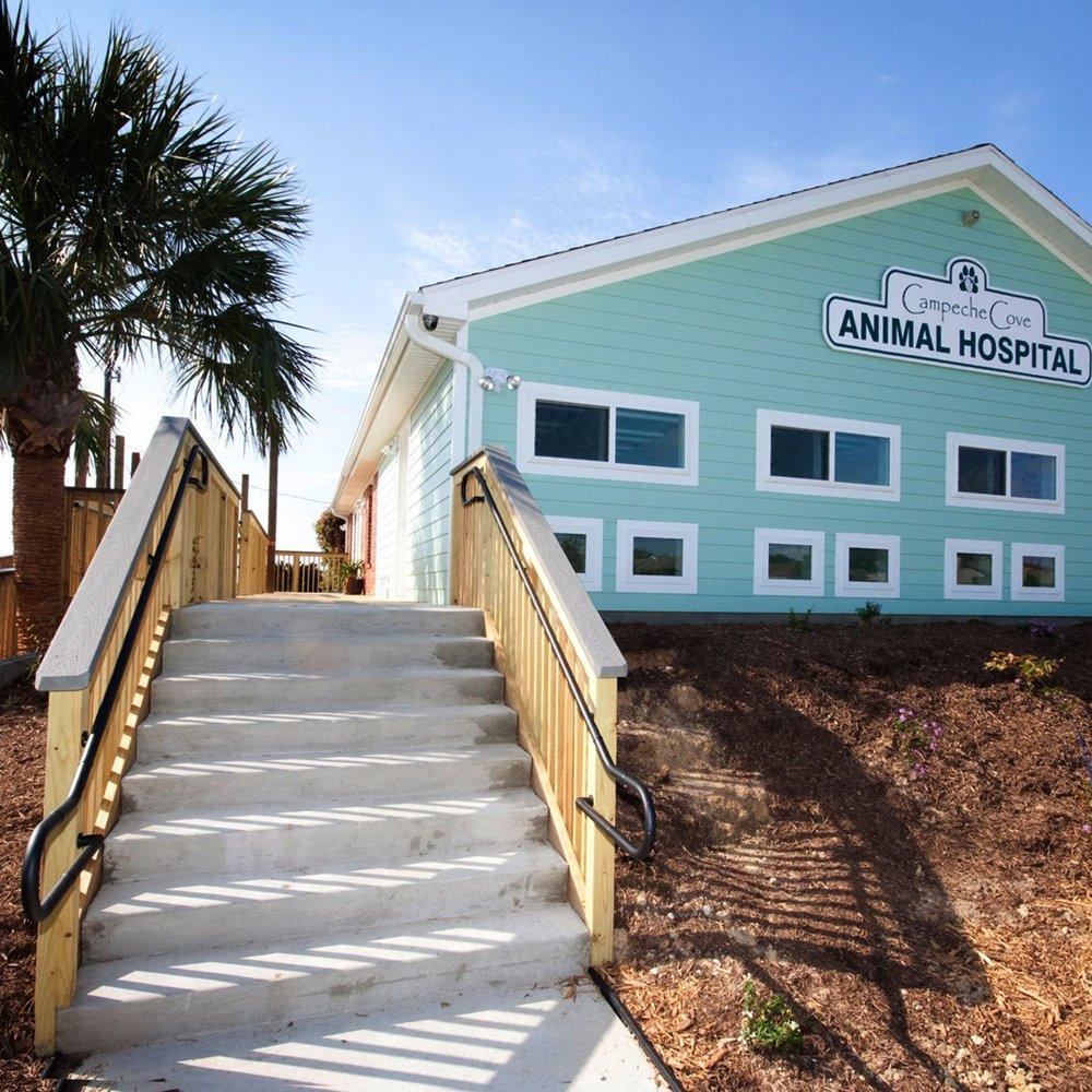 - Campeche Cove Animal Hospital