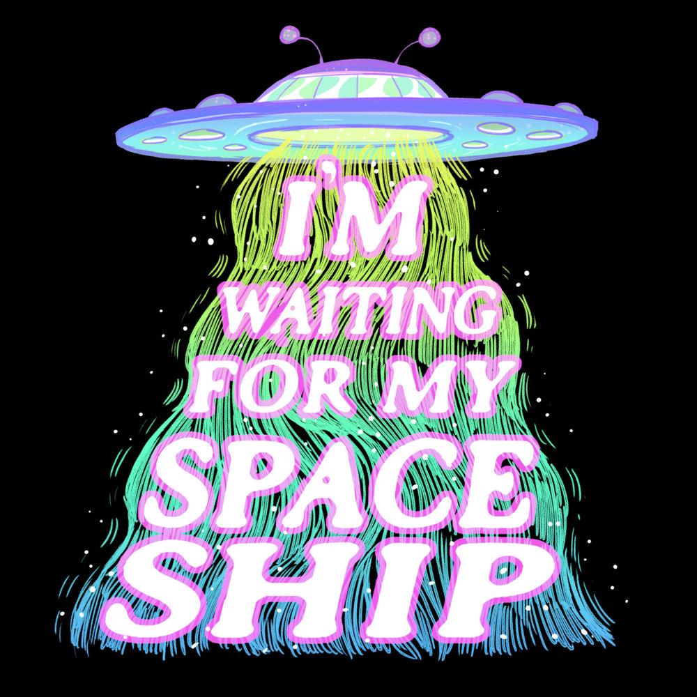 spaceshipfinalsmolSS.jpg