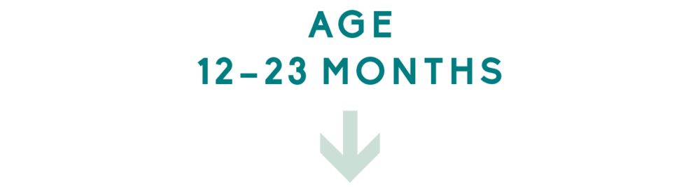 Age 12 – 23 Months