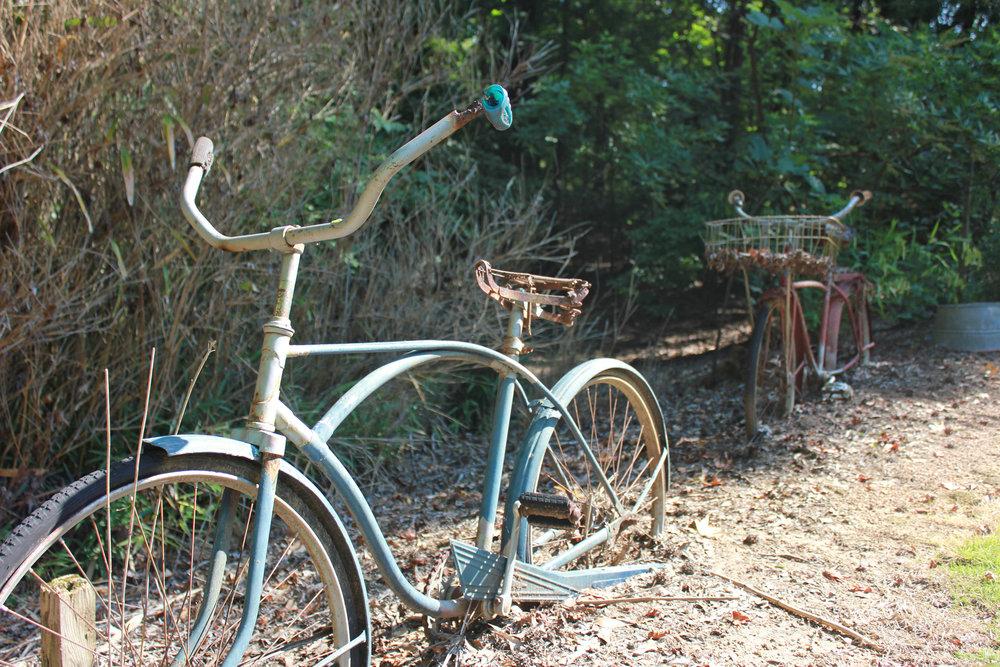 soiled bicycles.jpg