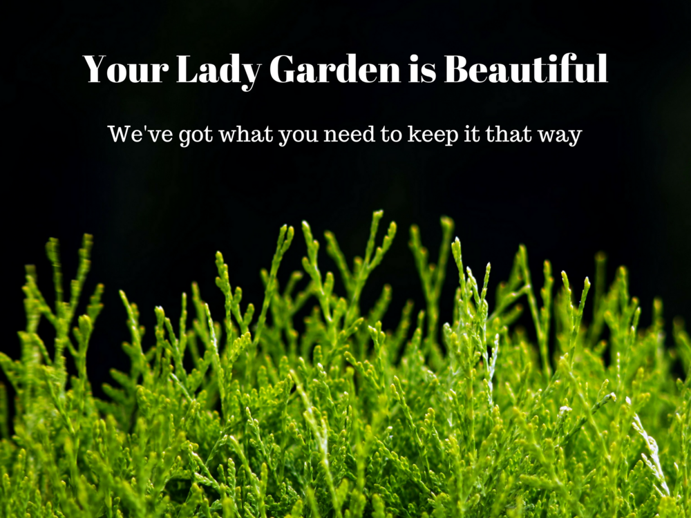 Your Lady Garden is Beautiful BIG.png