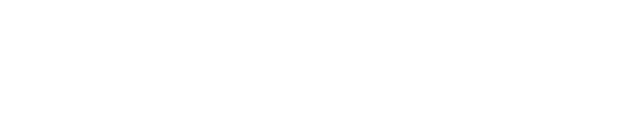 Express Wash Holidings - logo-04.png