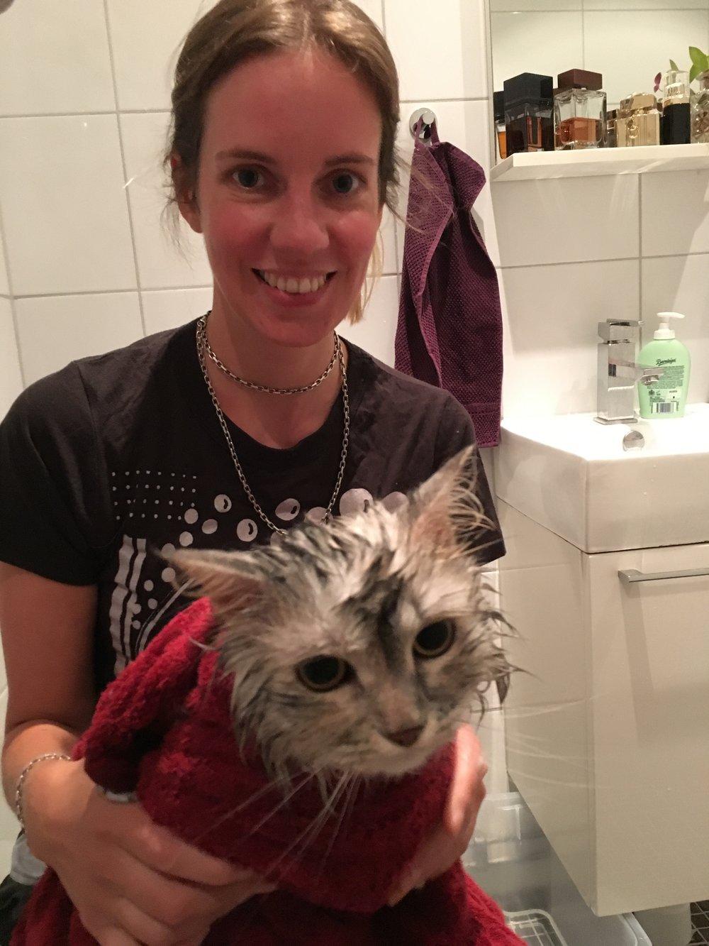 Sara, den gullnosen, stod inte bara för söndagsmiddagen - utan hjälpte även till att bada vår katt Pixel. Kissen var kanske inte helnöjd med att hamna i duschen, men se så fräsch hon är!