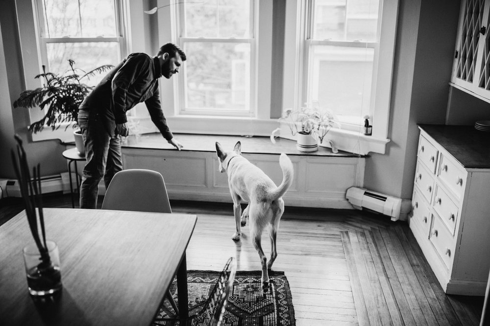 Providence-Rhode-Island-Puppy-Session-6.jpg
