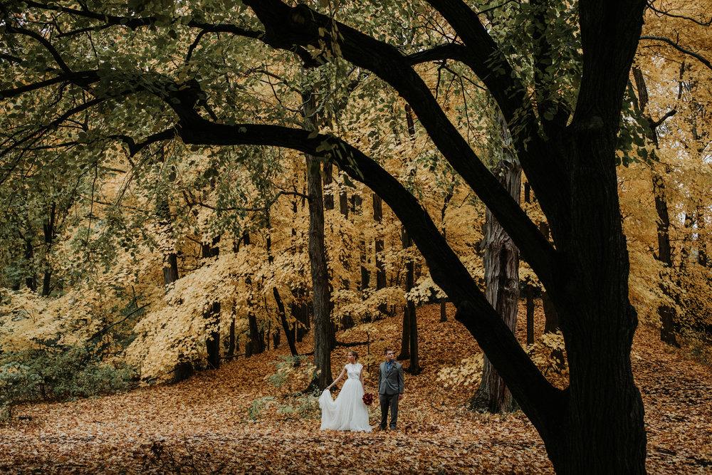 Arnold-Arboretum-Elopement-10.jpg