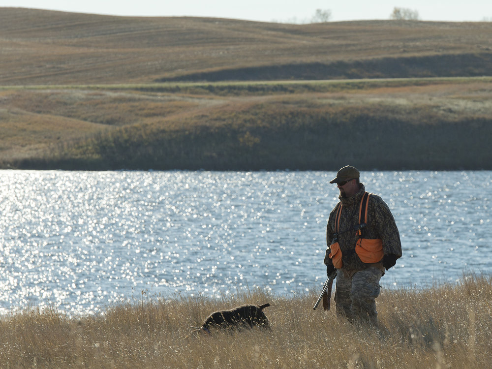 Pheasant hunter and dog.jpg