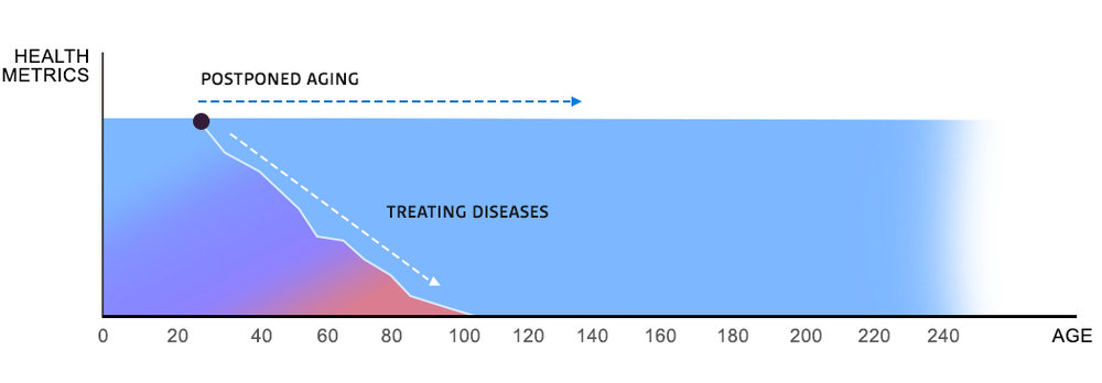 Figure 1.  Our results show that research focused on the mechanism of aging can extend youthfulness and lifespan many times, until the actual limit from intrinsic biological mortality is reached.