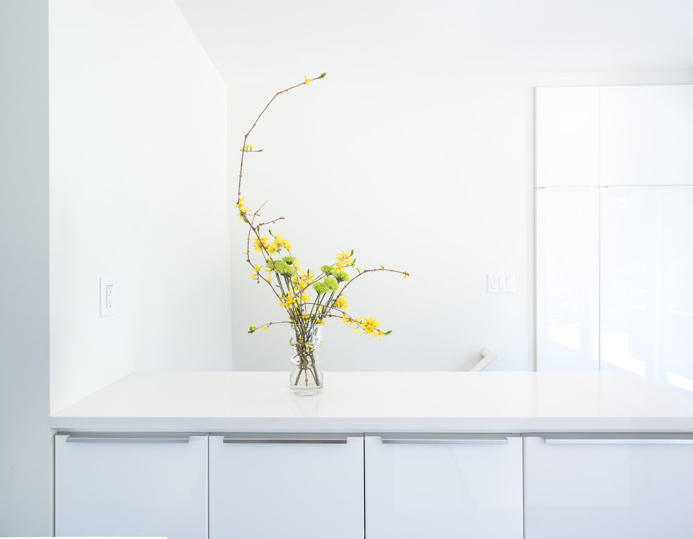Modern custom white kitchen cabinetry