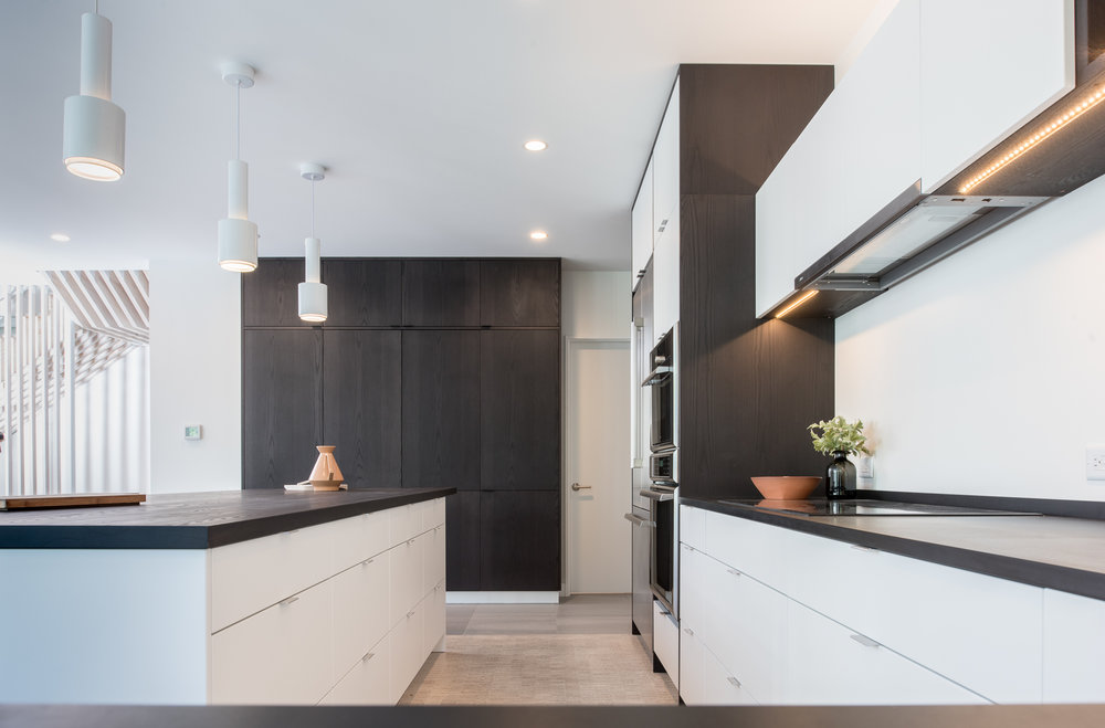 Modern monochromatic custom kitchen