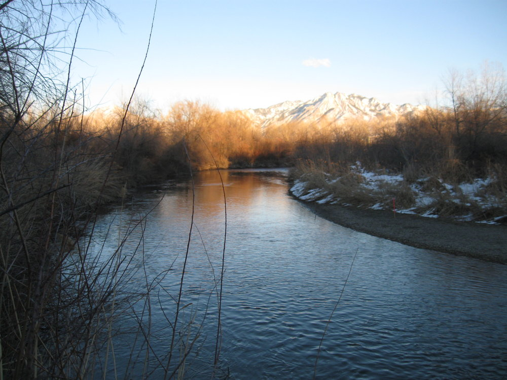 fromLundProperty_downstream_IMG_2868.JPG