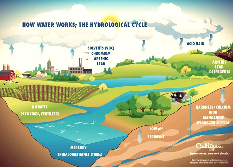 Hydrological-Cycle1.jpg