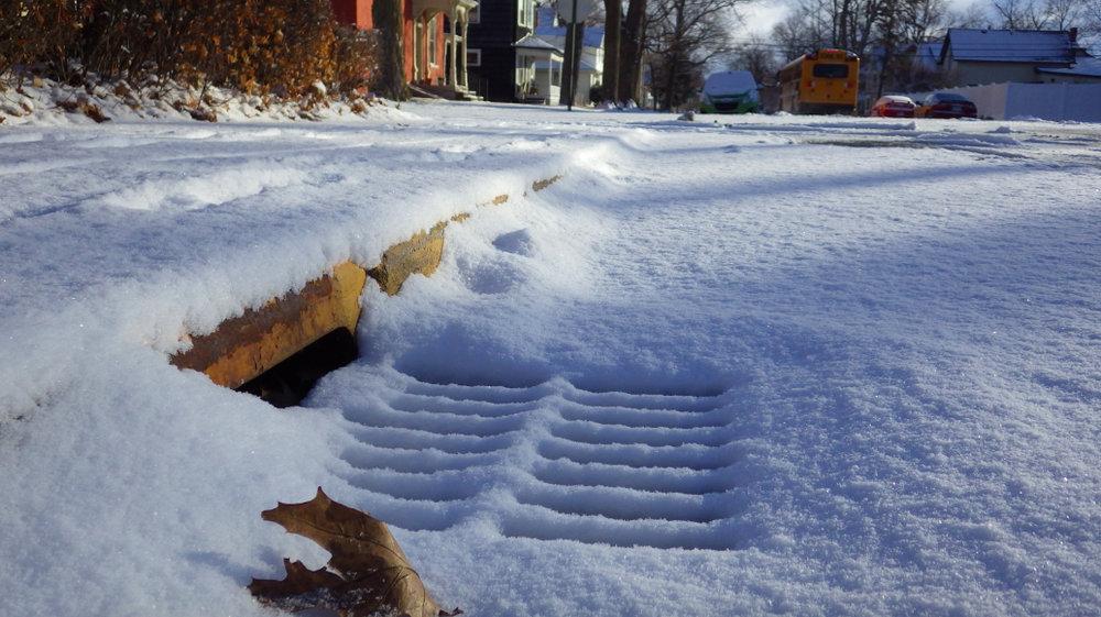 2019-02-08-SnowyStormGrate.jpg