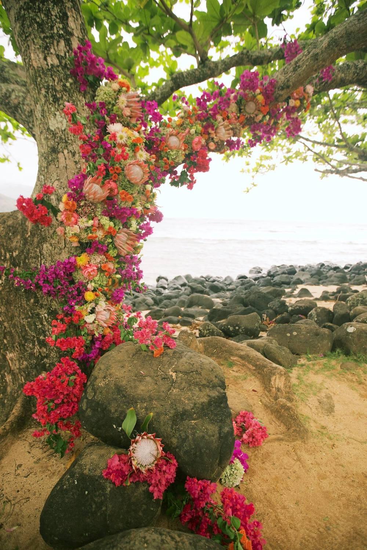 gorgeous tropical wedding tree.jpg
