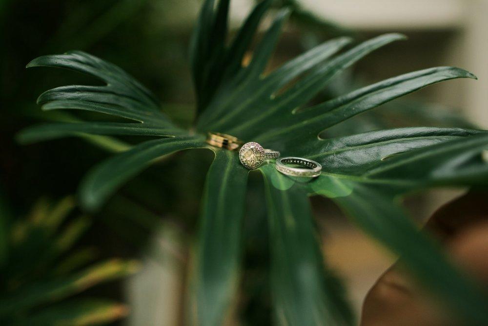 Wedding rings on leaf.jpg