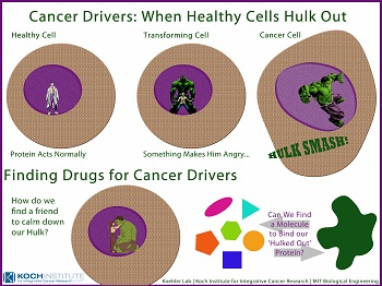 "Our outreach poster presenting cancer drivers as ""hulked out"" genes for children in the Cambridge community."