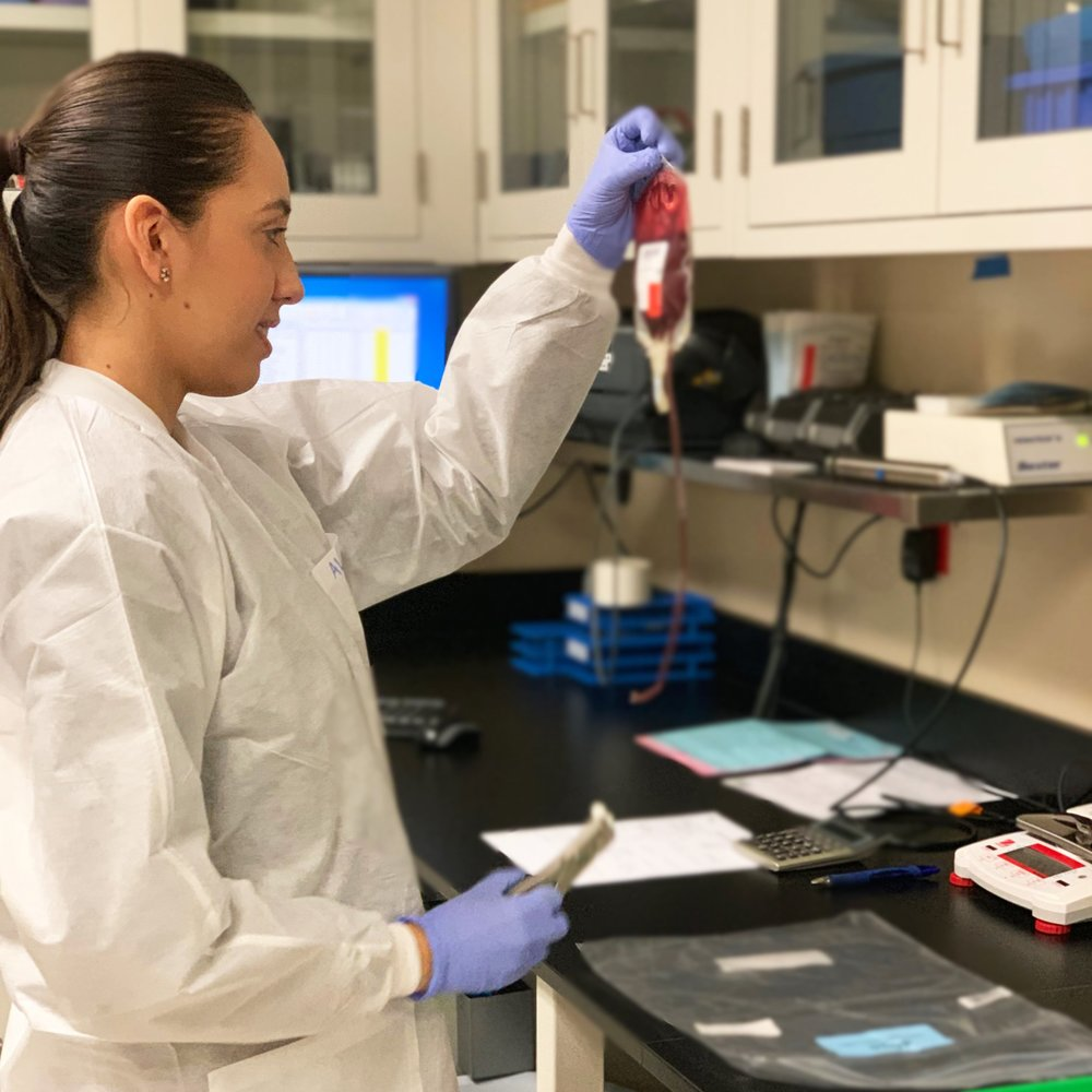A Cell Therapy lab technician processes a cord blood unit at our Gateway Lab.