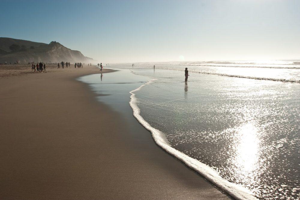 bigs-San-Gregorio-Beach-Looking-South-with-People-4414133-Large-1000x667.jpg