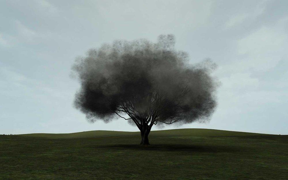 Smoke Tree2, 2006