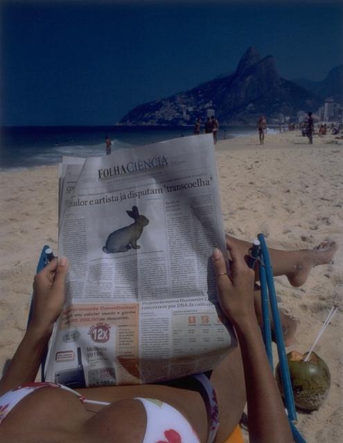 Free Alba!  (Folha Ciencia), 2002