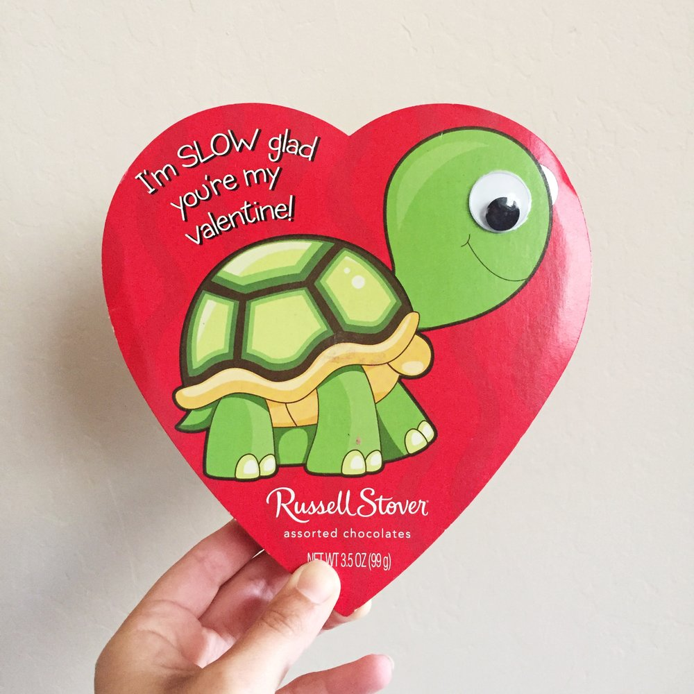 >>>First valentine/box of chocolates from from Will. (he told me to trash the turtle)