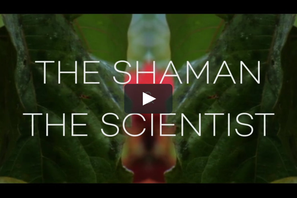 The Shaman and the Scientist Trailer    A short exploration of knowledge and scientific discovery, taking a side by side look at indigenous plant-based medicine in the Amazon jungle and its implications for new drug discovery.   Role:  Director, Executive Producer